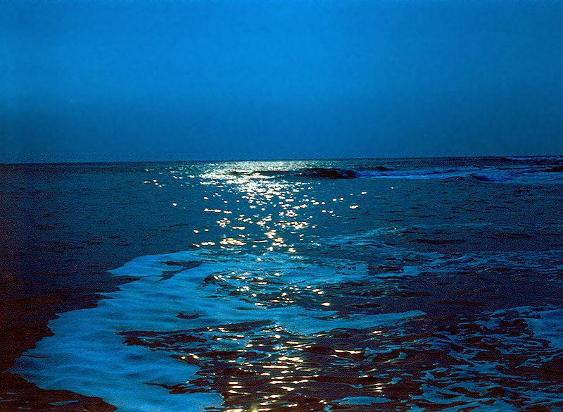Загадки о море